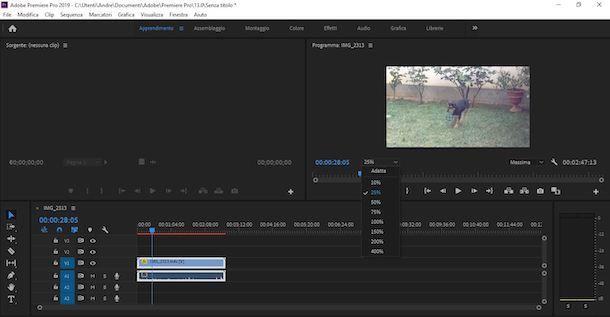Zoom video con Premiere