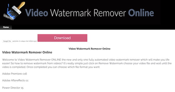 Video Watermark Remover Online