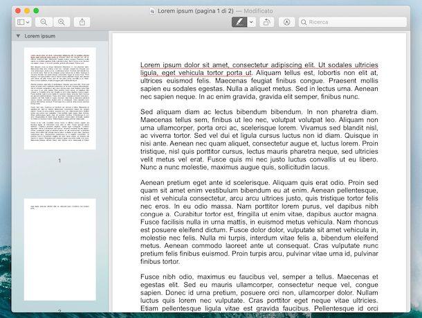 Anteprima PDF