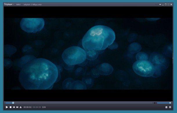 programma visione dvd divx