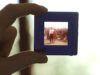 Come digitalizzare diapositive
