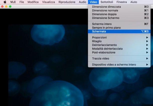 Programmi per estrarre foto da video