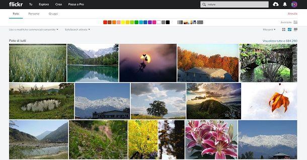 Scaricare immagini gratis da Flickr