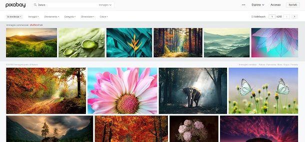 Scaricare immagini gratis da Pixabay