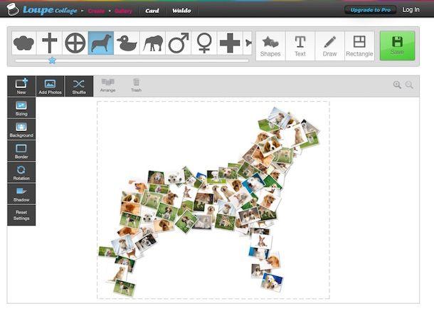 Screenshot del servizio online Loupe Collage