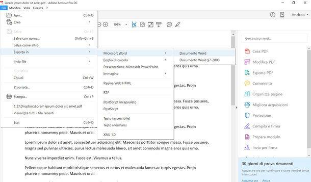 Programma per convertire PDF in Word