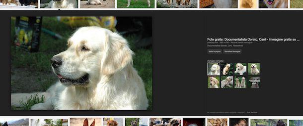 Screenshot di Google Immagini