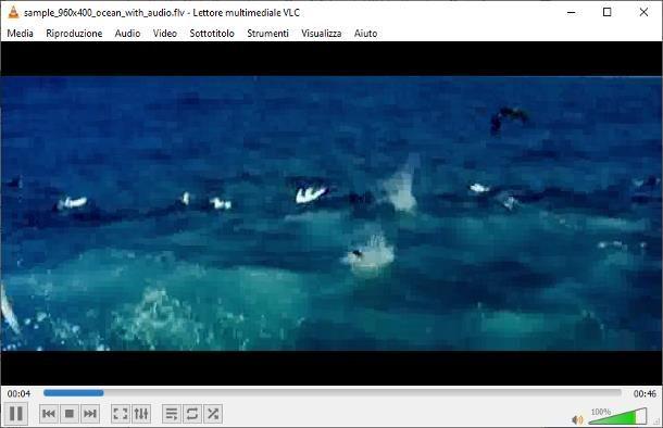 Come scaricare Adobe Flash Player gratis su Windows