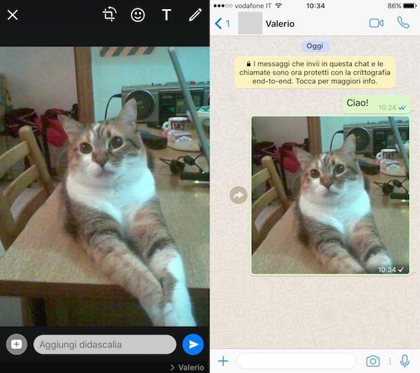 Come inviare messaggi WhatsApp