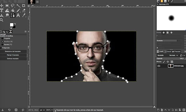 Applicazione per fotomontaggi GIMP