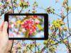 App per fotografi