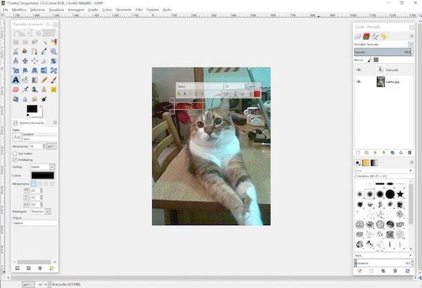 Come scrivere sulle foto gratis