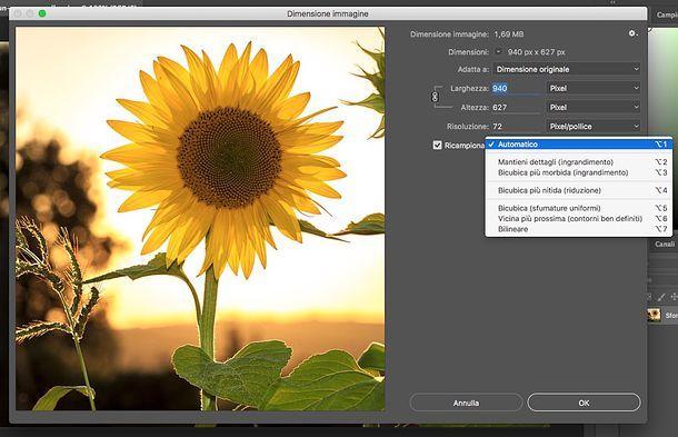Come ridimensionare un'immagine con Photoshop | Salvatore