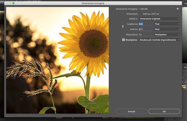 Come ridimensionare un'immagine con Photoshop