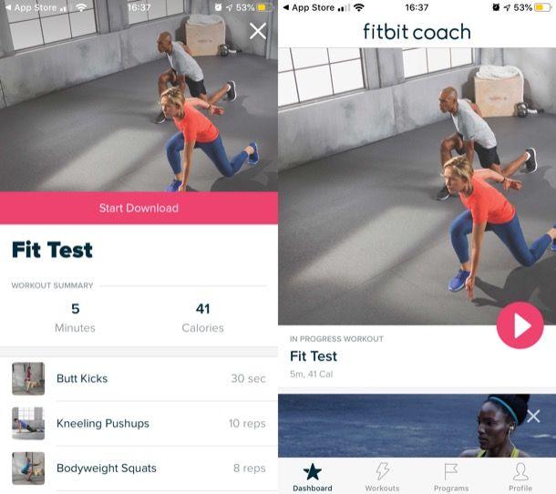 Fitbit Coach