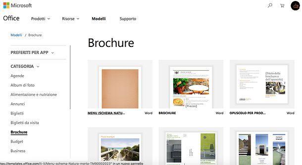 Brochure Word online