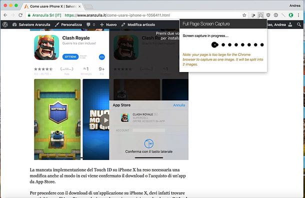 Come copiare una pagina Web come immagine Chrome