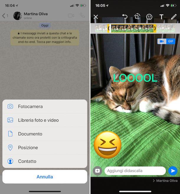 Come mandare GIF su WhatsApp iPhone