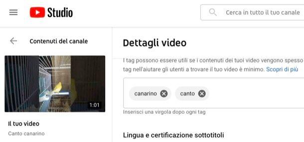 Inserire un tag su video YouTube