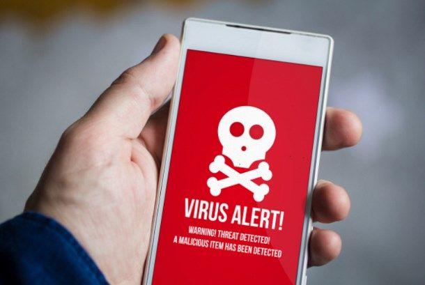 virus rete cellulare
