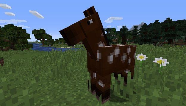 Come Domare un Cavallo in Minecraft Versione PC