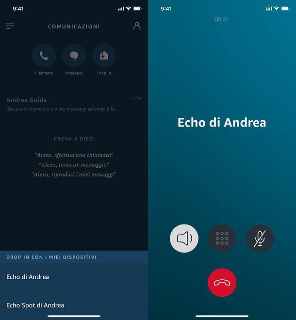 Chiamate ad Amazon Echo