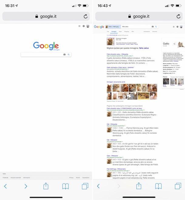 Come cercare una foto su Google dal cellulare