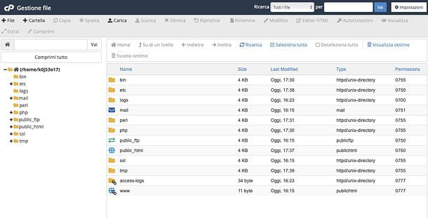 Gestione File cPanel