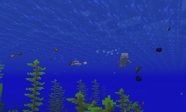 Delfini che giocano Minecraft