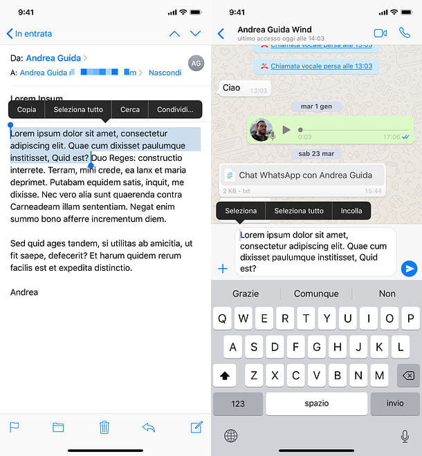 Come inoltrare testo email su WhatsApp per iPhone