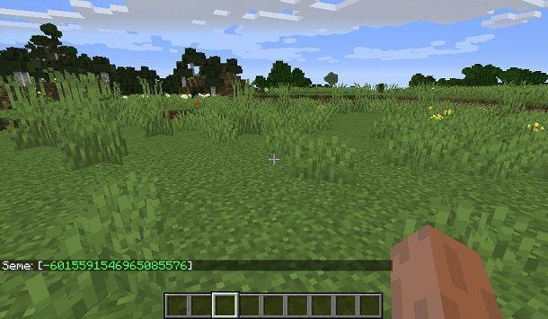seed Minecraft