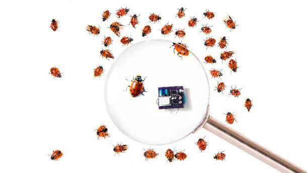 Come installare una microspia in casa
