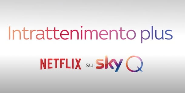 Netflix su Sky