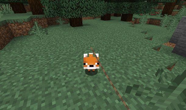 Cucciolo di Volpe su Minecraft
