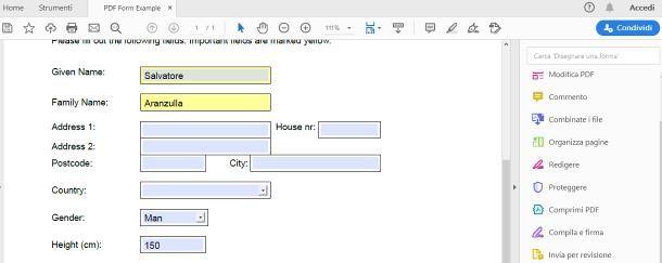 Come faccio a compilare un modulo in PDF su PC