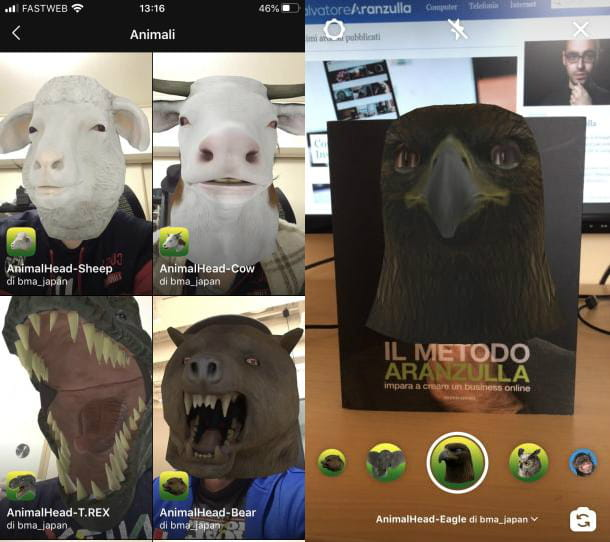 Animale Instagram filtro