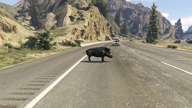 Macchine animali GTA 5