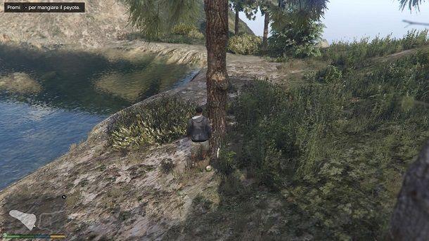Mangiare pianta peyote GTA 5