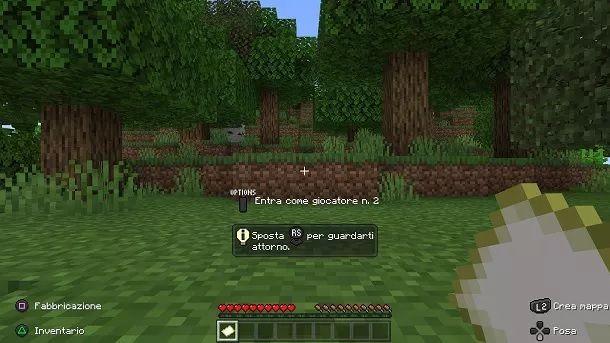 Minecraft due locale