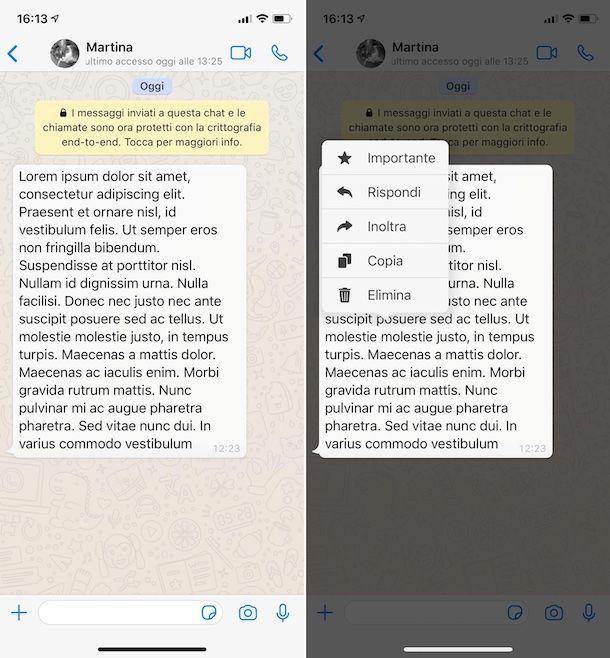 Copiare messaggi WhatsApp su iPhone