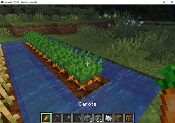 Coltiva le carote in Minecraft