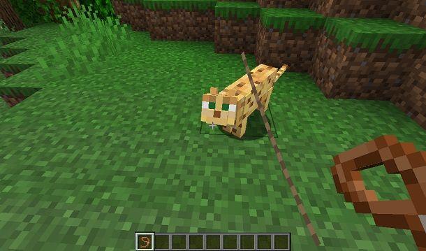 Portare animale al guinzaglio su Minecraft
