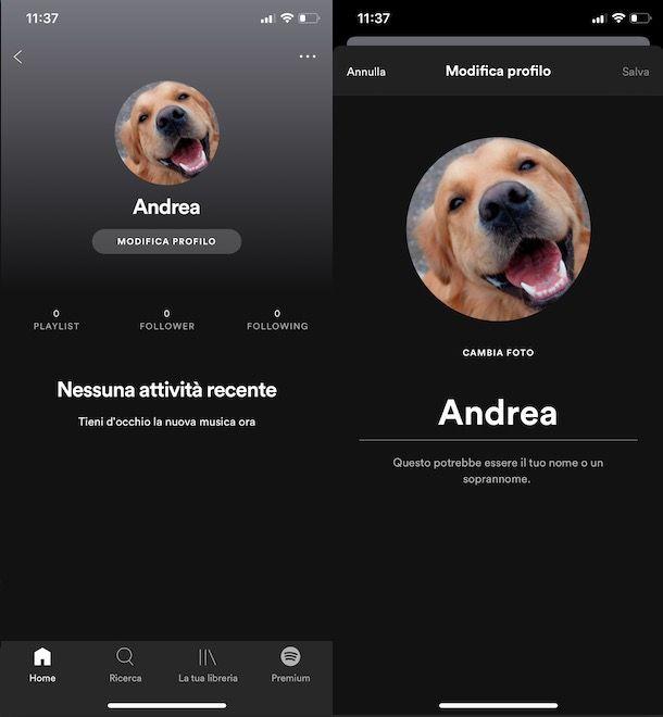 come cambiare immagine profilo Spotify da iPhone