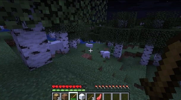 Sopravvivere Minecraft