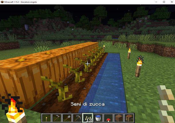 Coltiva le zucche in Minecraft