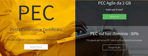 Crea una PEC con Register