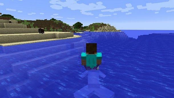 Cavalcare delfino Minecraft