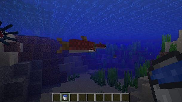 Secchio con pesci