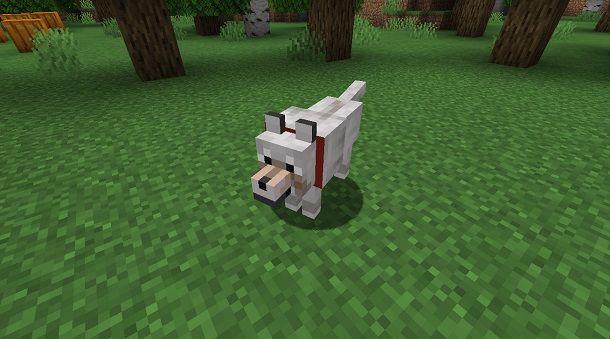 Lupo su Minecraft