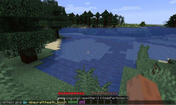 Effetto boost salute su Minecraft